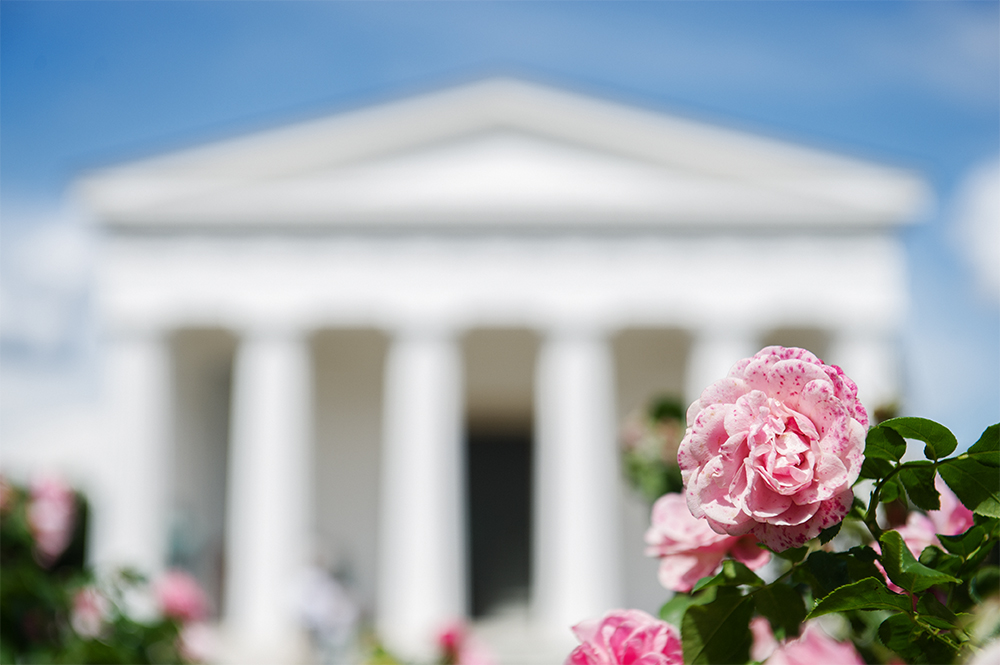 volksgarten, vienna, park, flowers, roses, theseustempel