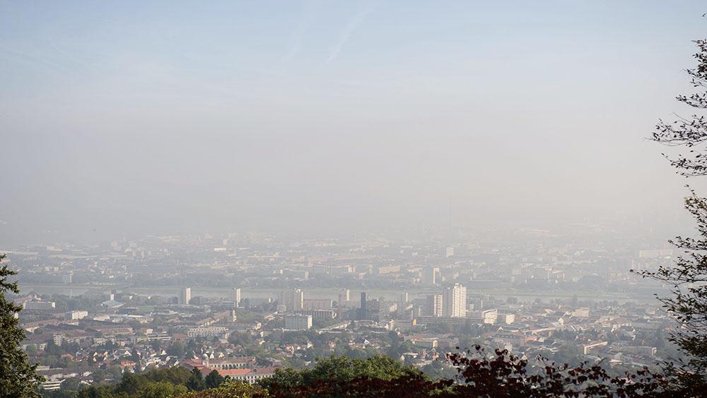 linz, pöstling berg, from above, mist