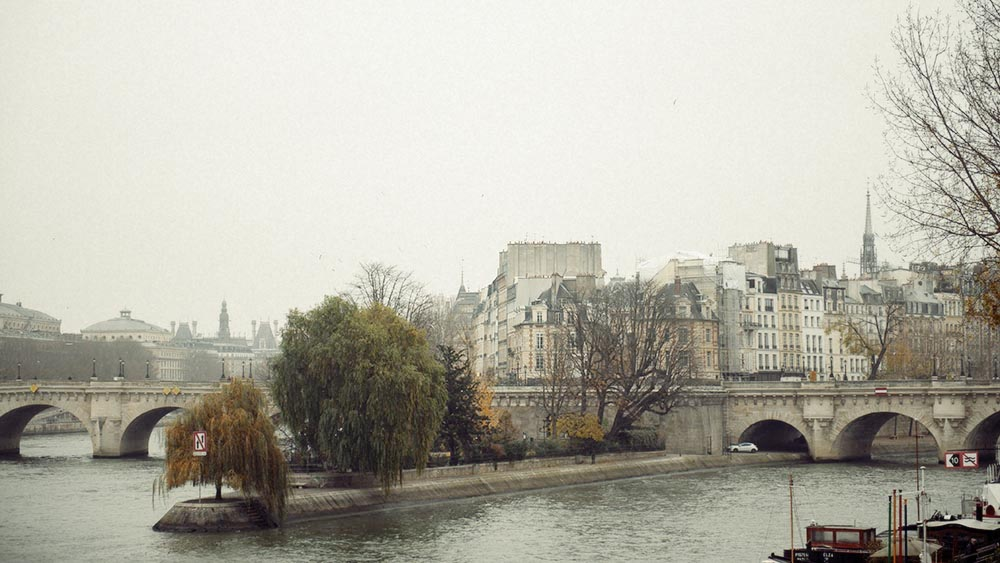 Paris, pont neuf, winter, fog