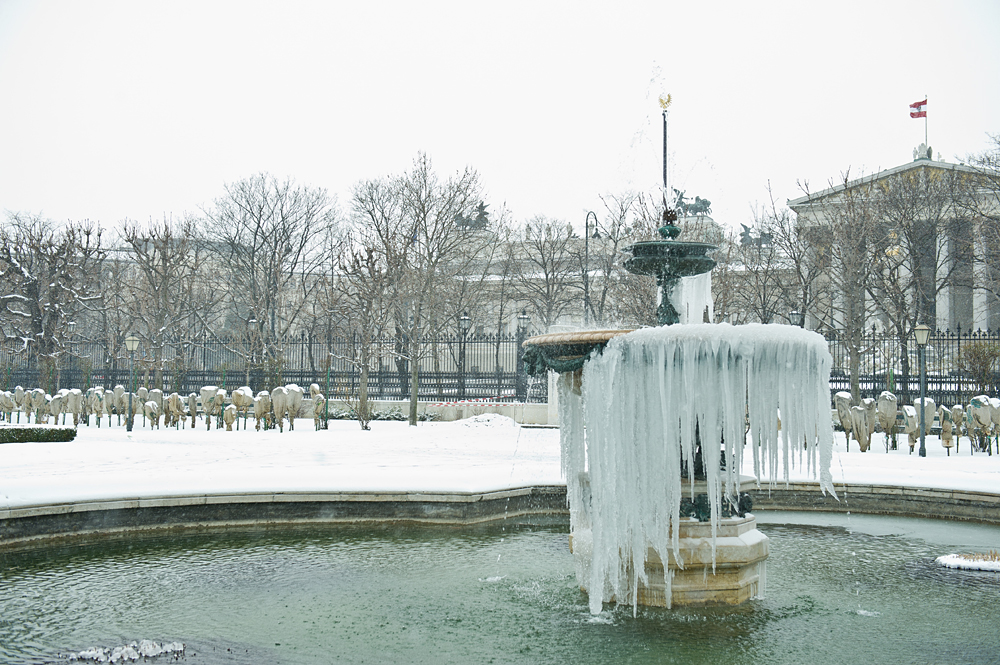 winter, snow, ice, cold, volksgarten, vienna