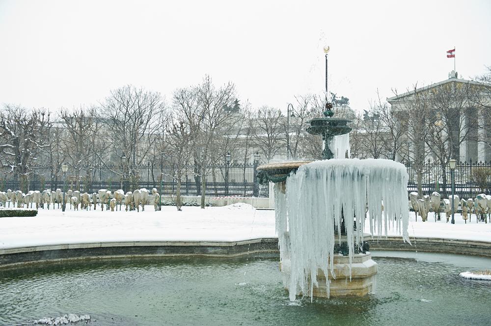 winter, snow, ice, cold, volksgarten, vienna