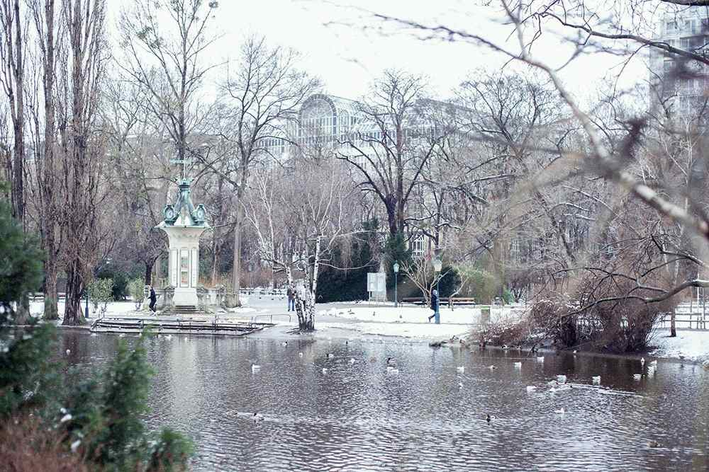 vienna, stadtpark, nature, snow, white, winter