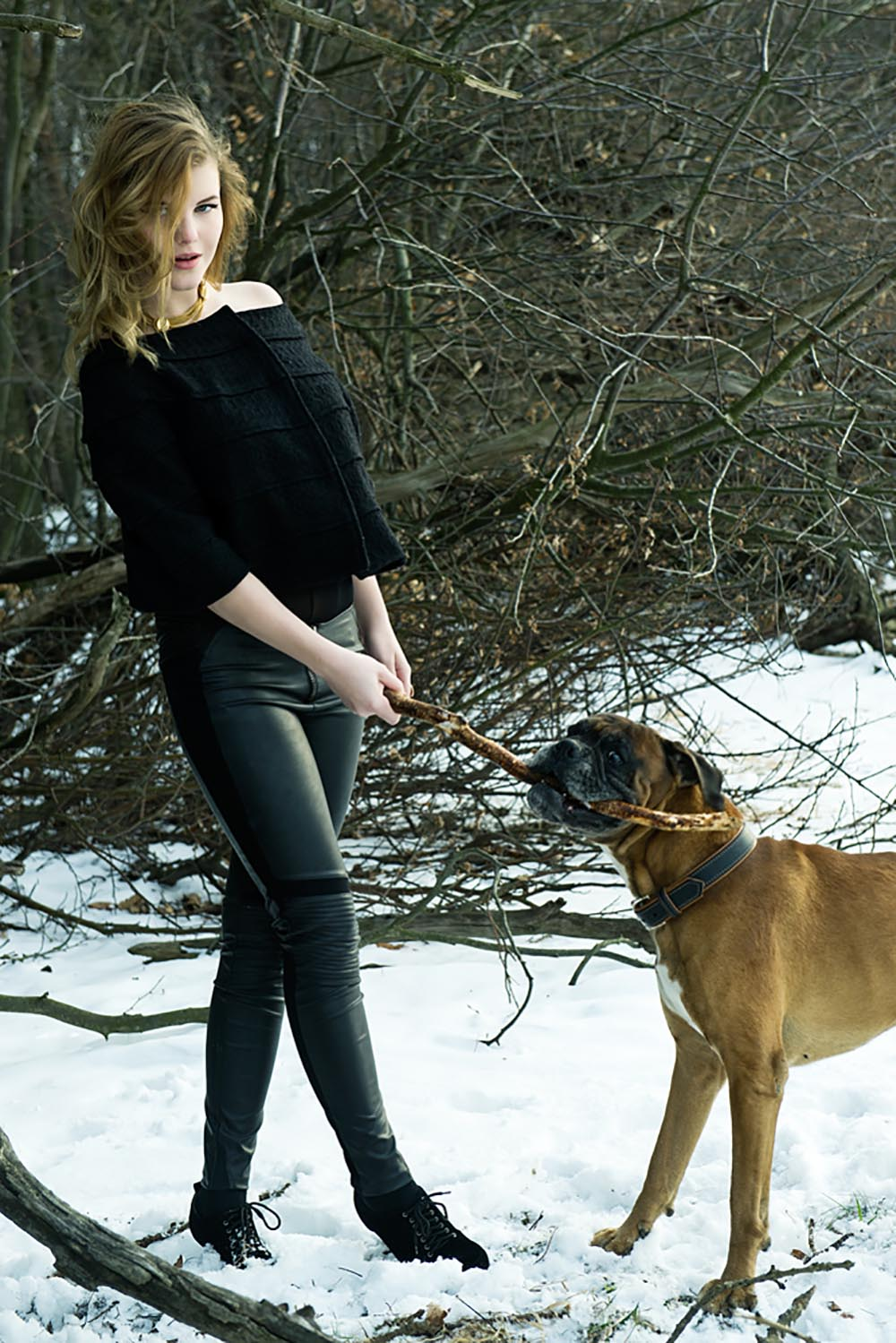 teresa kodolitsch, oliver dorfner, photography, portrait, vienna, dogs, boxer, dogger, fun, snow, winter