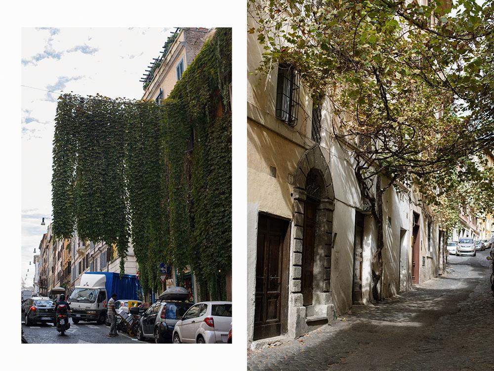 rome, roma, italy, monti, alley