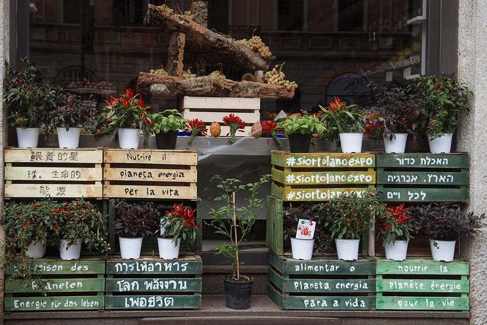 mercato metropolitano, milan, food, market, street food, bio, italy, navigli, milan