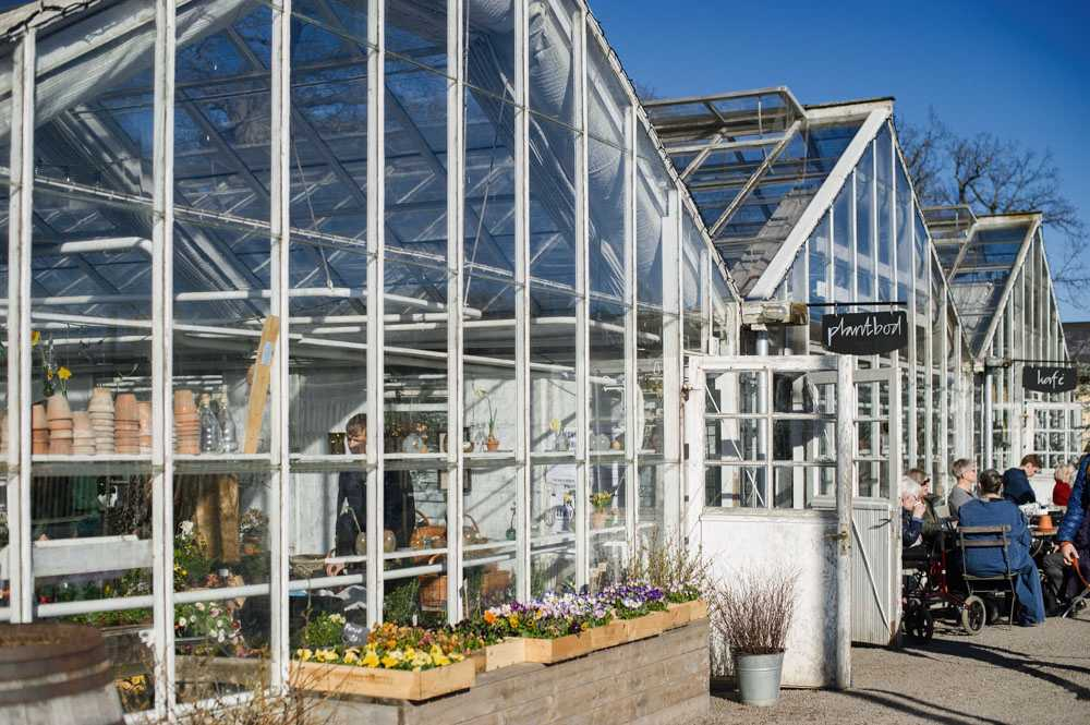 rosendals garden, stockholm, sweden, open garden, biodynamic, café, green house