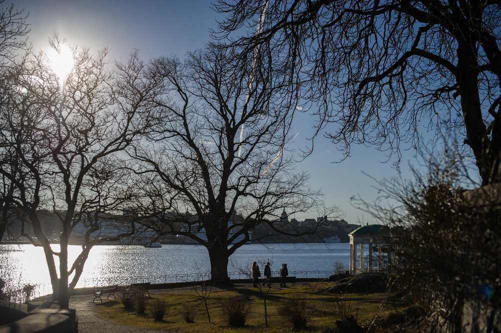 djurgarden_stockholm_10
