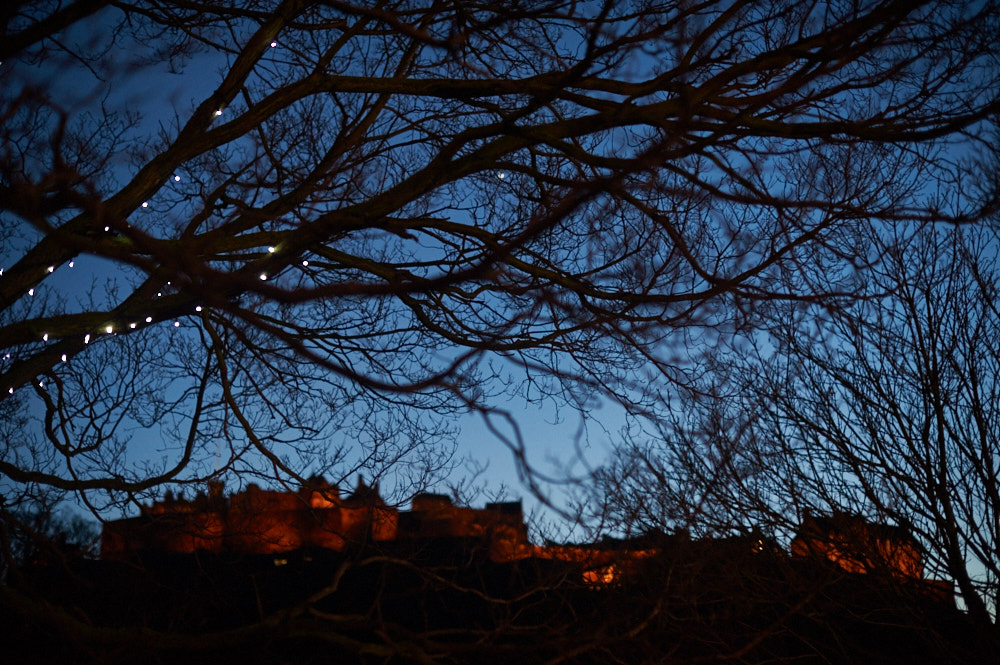 edinburgh, castle, night, scotland, spring, uk, blue hour