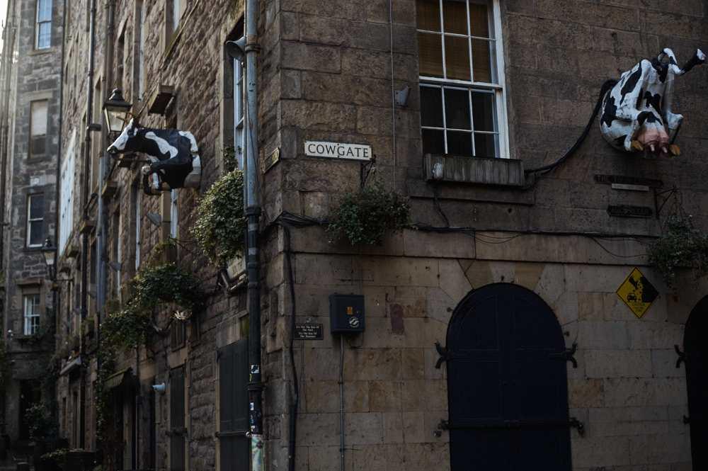 edinburgh, victoria street, scotland, uk, grassmarket, pub