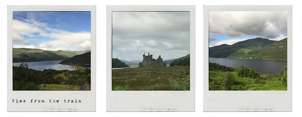 oban, scotland, uk, bay of oban, seal, water, boat trip, my trip to the hightlands, train