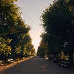 Early morning in Schönbrunn