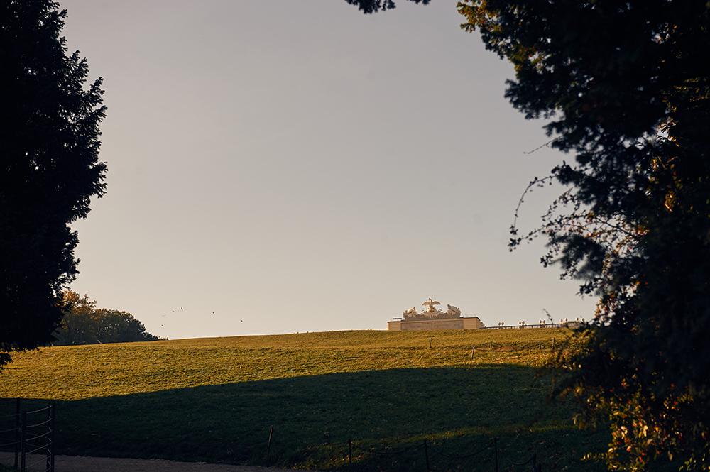 schönbrunn, summer palace, vienna, gardens, autumn, altweibersommer, indian summer, early morning, light, shadow, autumn