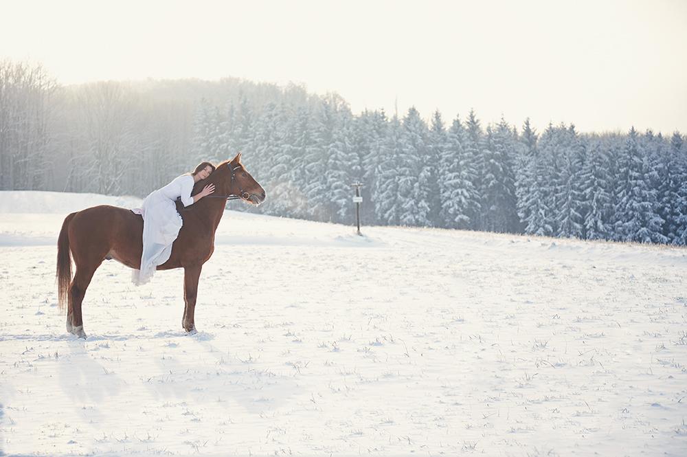 winter, horse, portrait, destination, vienna, early morning, sunshine, beauty, girl, ursula schmitz
