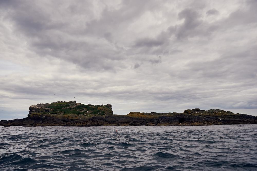 portrush, sea tours, speed boat, causeway coast, northern ireland, uk