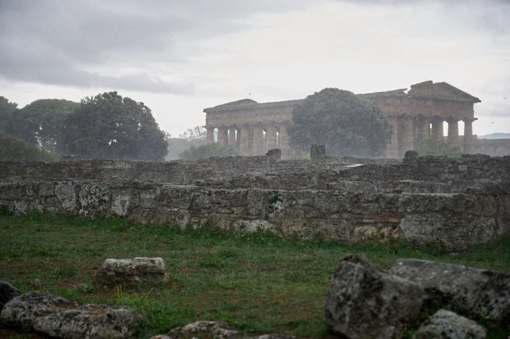 paestum, camagnia, greek, italy, ursula schmitz, ruins, temple