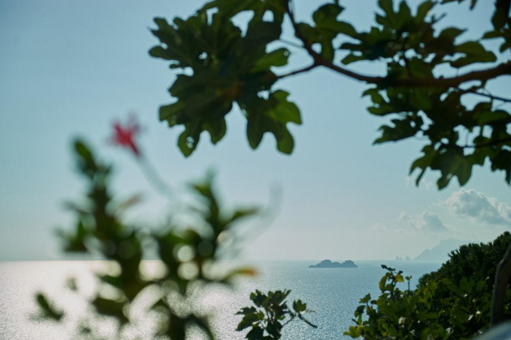positano, italia, roadtrip, campania, amalfi coast, dream holiday