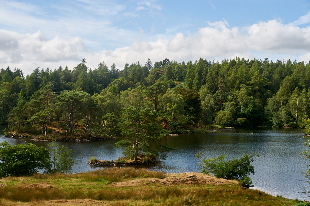 tarn hows, coniston, lake district, cumbria, walk, travel, holiday, national trust