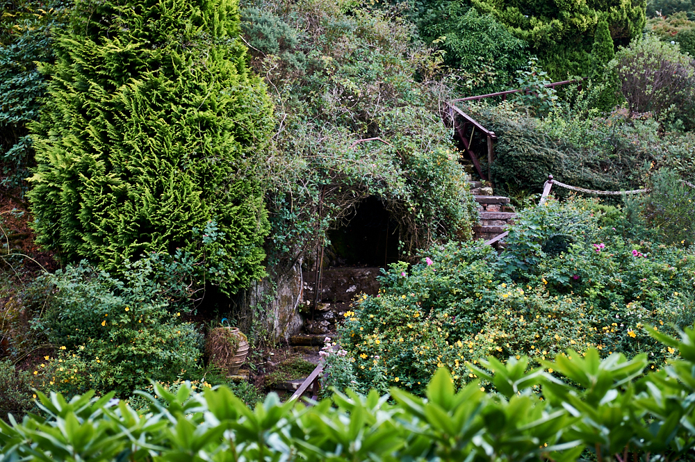 Glenwhan Gardens, dumfries, galloway, scotland, uk, garden, airbnb, nature, stranaer, dunragit, flowers, plants