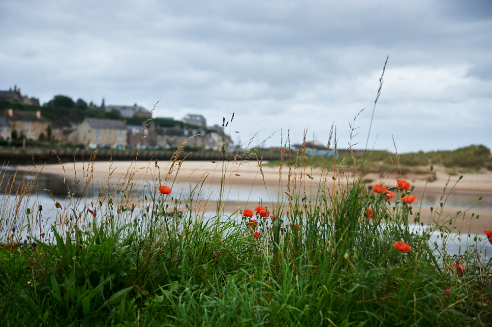 Lossiemouth 24