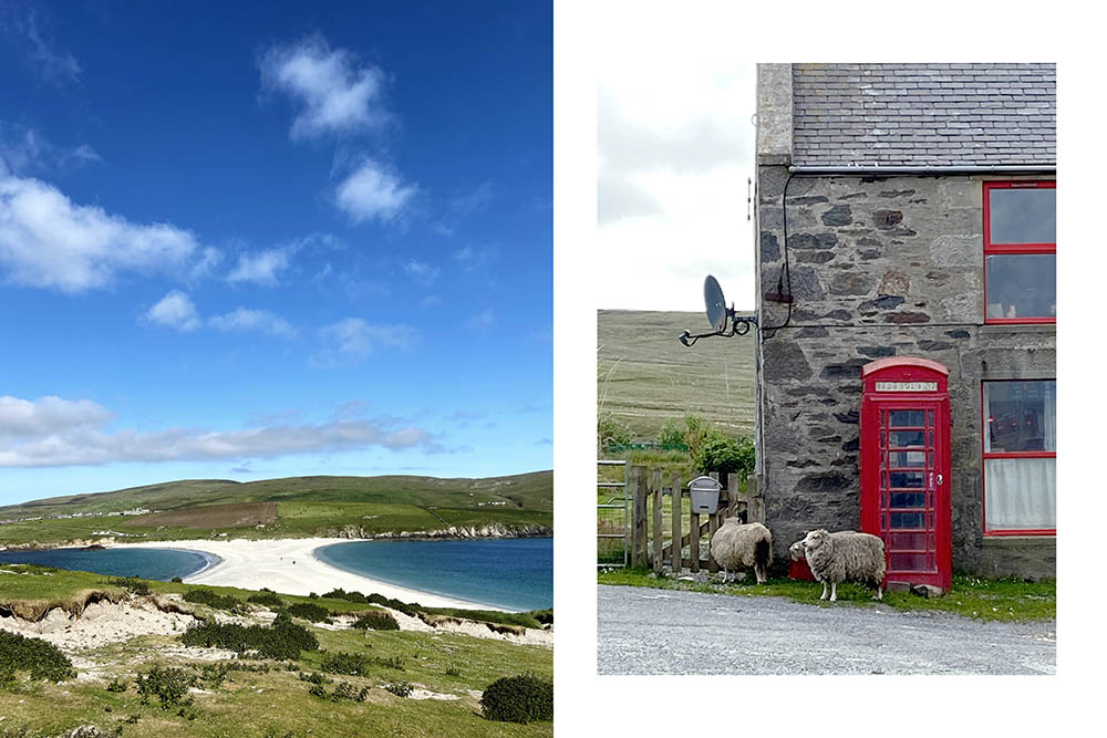 St. Ninians beach and some sheep waiting for the phone in yell