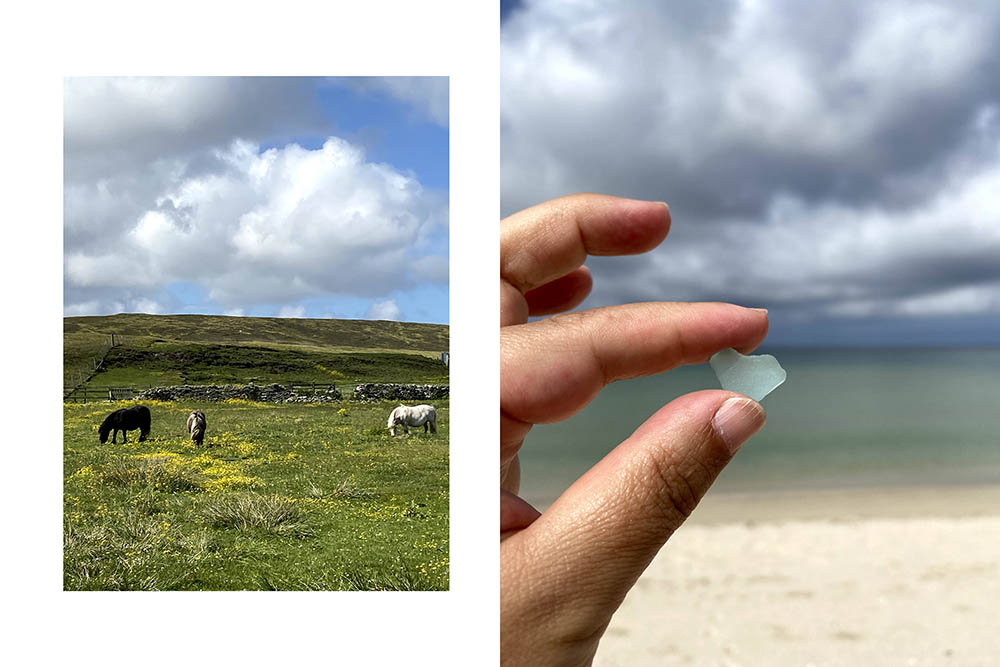 found a heart on a beach in yell and some shetland ponies